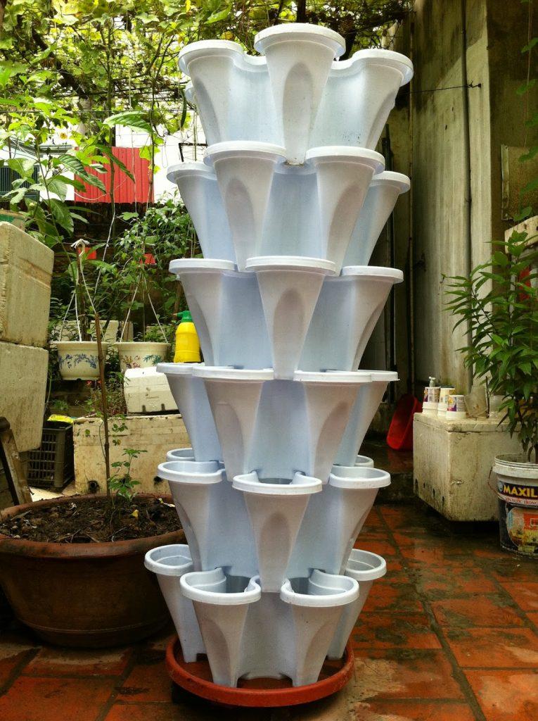 Chậu Nhựa Trồng Rau 5 Cánh Đồng Nai